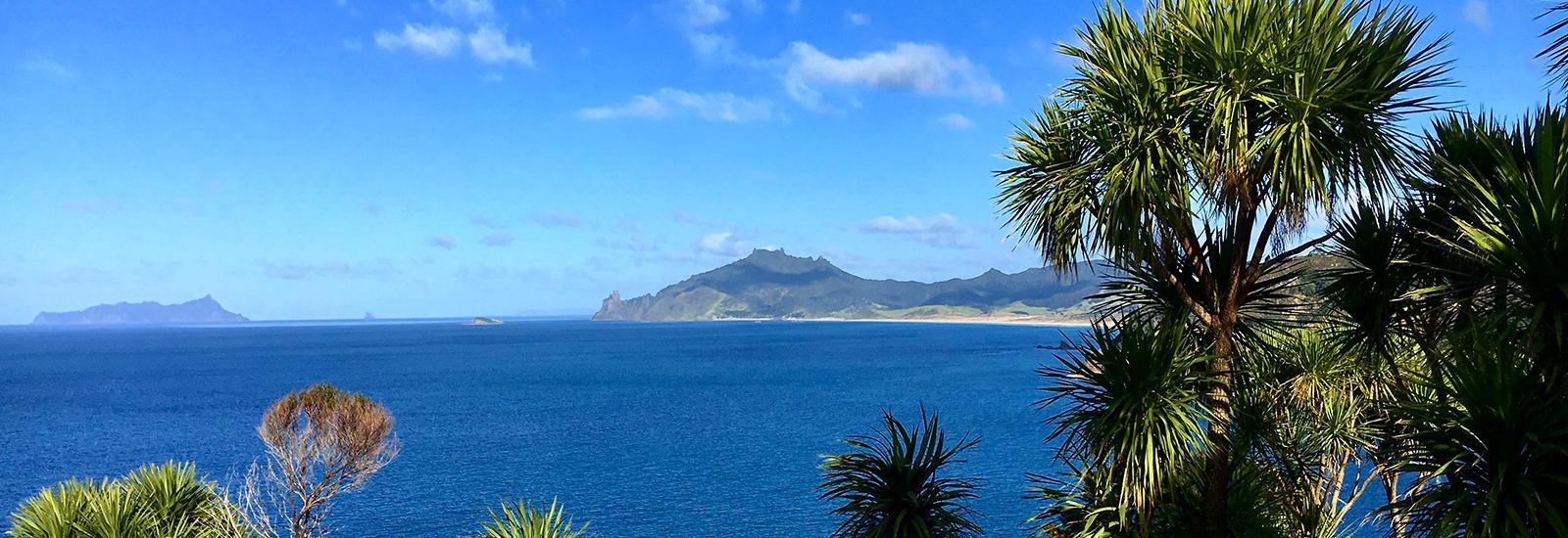 Te Whara views Northland
