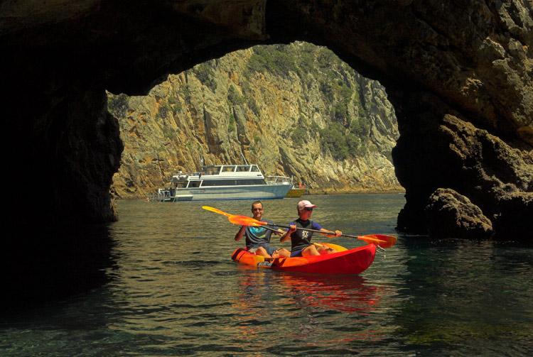 Kayaking at Poor Knights with Dive! Tutukaka