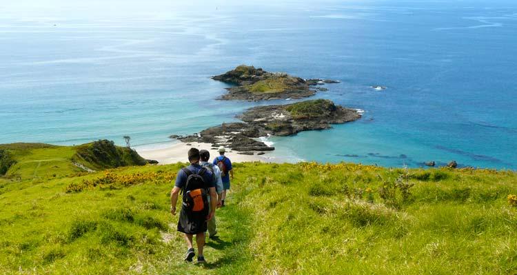 The Approach to Ocean Beach - Bream Head Walks
