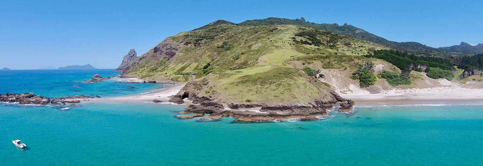 Bream Head Scenic Reserve