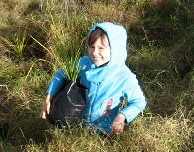 Conservation at Ara Roa