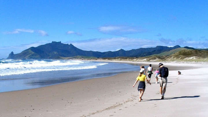 People walking on northland beach at Whangarei Heads