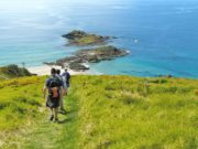 Bream Head local walks and hikes