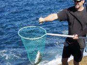 Rock fishing at Kauri Mountain Point