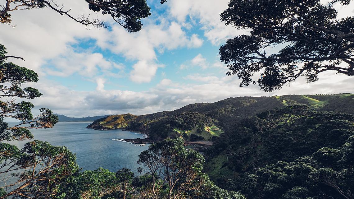 tewhara-views