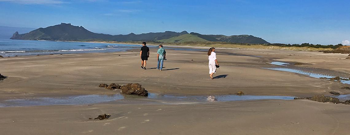 northland beach