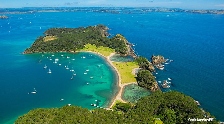 Roberton Island in the Bay of Islands