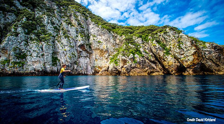 Poor Knights Islands paddle boarding