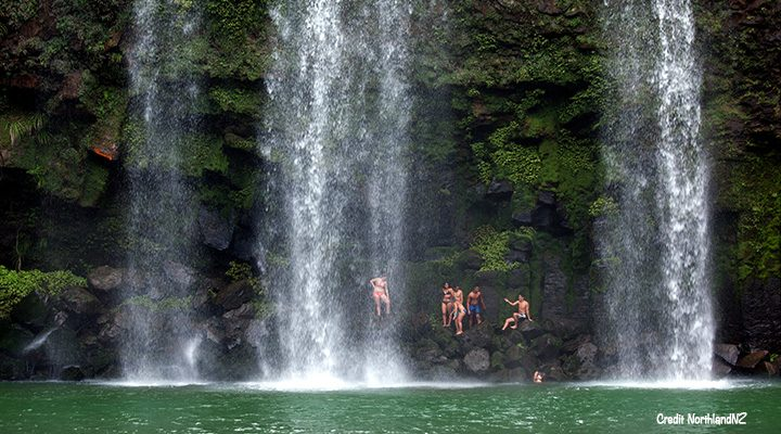 Young people swimming at Whangarei Falls