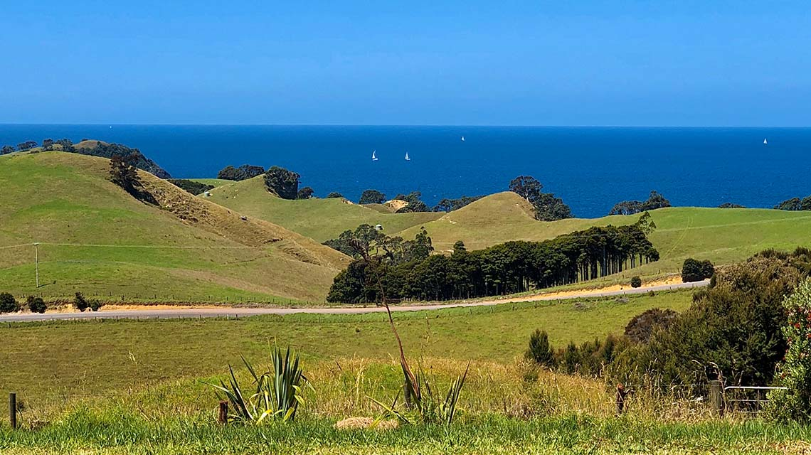 ocean-views-form-northland-holiday-rental