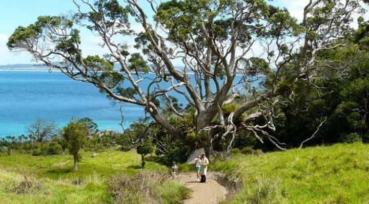Busby Head Smugglers Cove walk